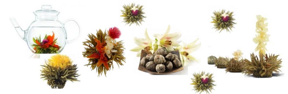 Blumen Tee